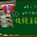 小後頭直筋(後頭下筋群)【3D筋肉・解剖学】