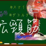 広頚筋【3D筋肉・解剖学】