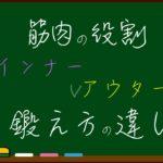 インナー(コア)マッスルとアウターマッスルの違い【筋肉の役割】