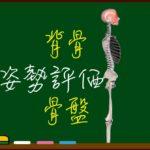 背骨のS字カーブはなぜ必要?背骨と骨盤で評価する良い姿勢