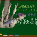 短母趾屈筋【3D筋肉・解剖学】