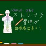 その【背伸び】では肩こり・腰痛が悪化する?【正しいストレッチ】とは?